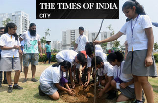 Massive tree plantation drive launched in Gurgaon
